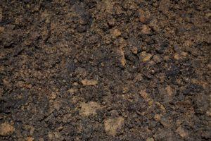 Hochbeet Anlegen Der Leitfaden Zur Befullung Und Bepflanzung